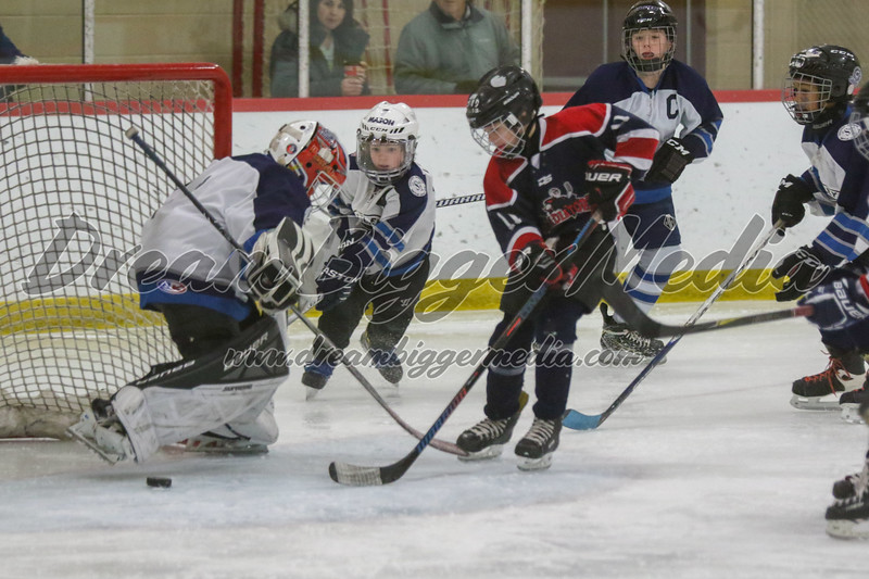 Gladwin Squirts Districts 020820 4435.jpg