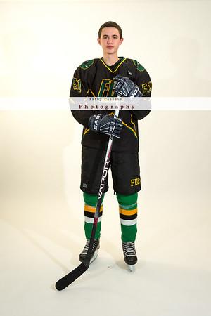 FDR Ice Hockey 2014-15