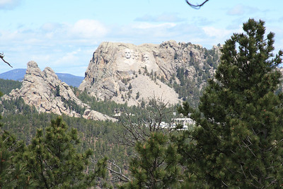 Black Hills 2011/13