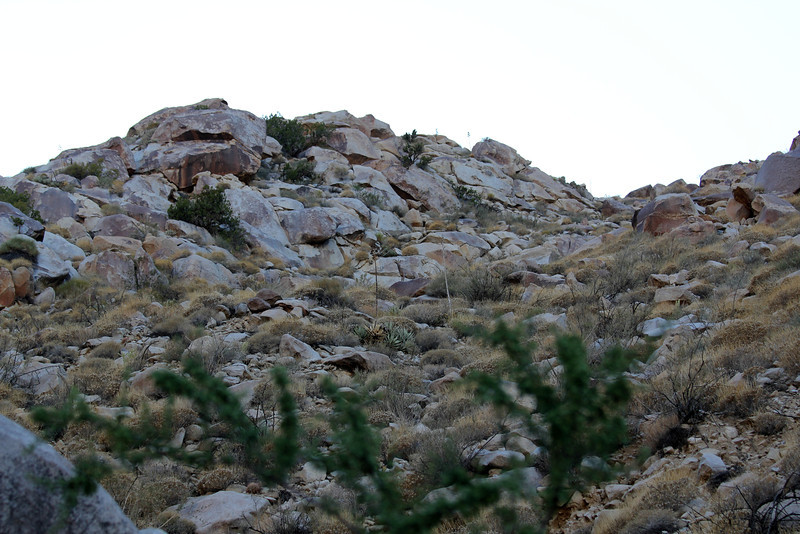 05 Cougar Canyon (150).JPG