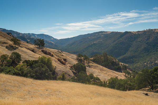 Ohlone Wilderness Regional Trail