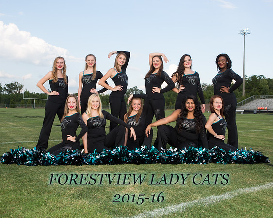 2015-16 Forestview Lady Cats