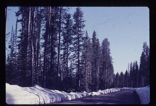 1973 - California Trip