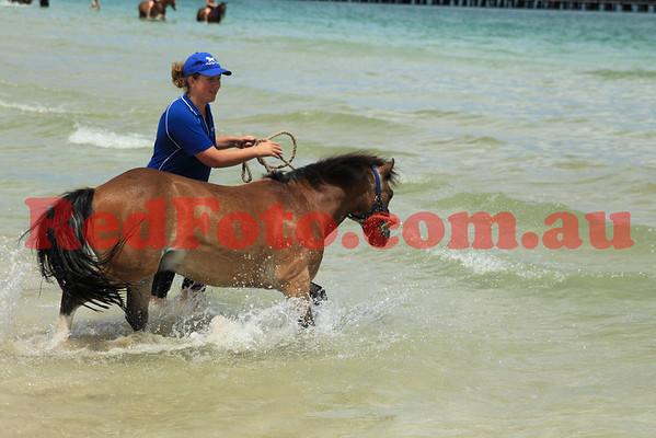 2012 12 16 Naval Base Beach 10-00 till 11-00