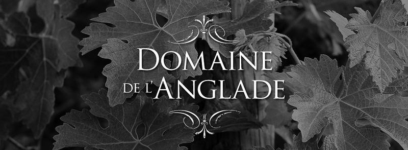 Domaine-FB-Header-8.png