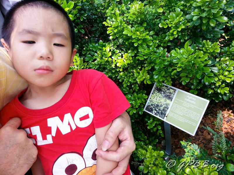 20120929_105903.jpg