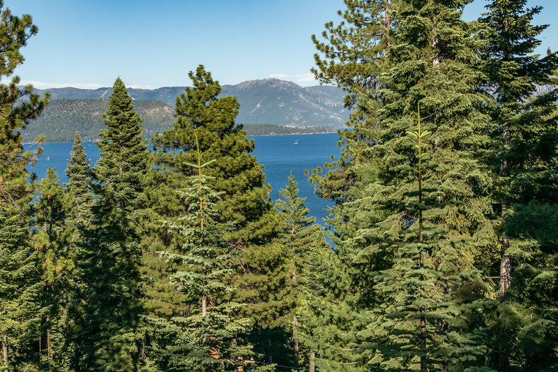 Lake Tahoe (34 of 164).jpg