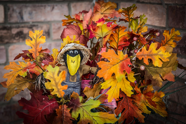 Psst…welcome to fall
