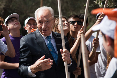 20121101  Shimon Peres harvests olives in Presidential Residence Garden