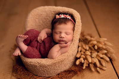 Karina • Newborn