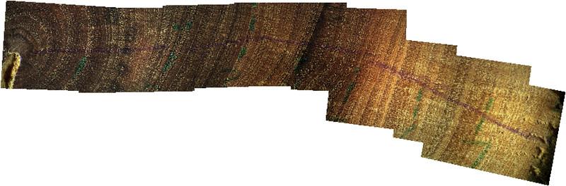C0692 Manzanita branch Middle Ridge