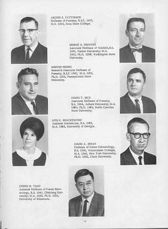 1966 Cypress Knee