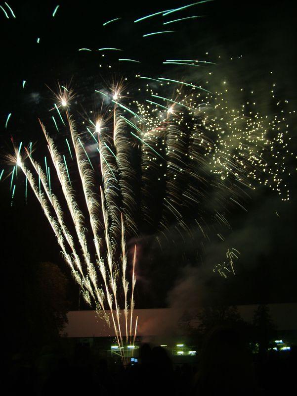 2004_1105putneyfireworks20072.JPG