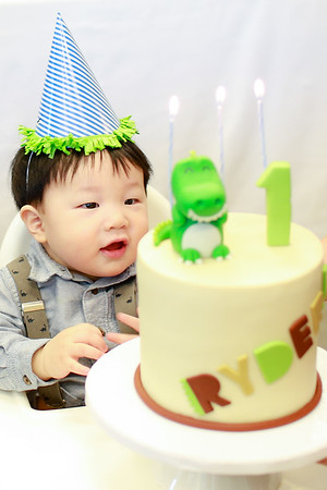 Ryder's First Birthday Party