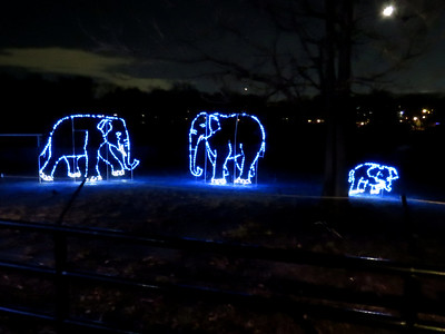 Zoo Lights 2018