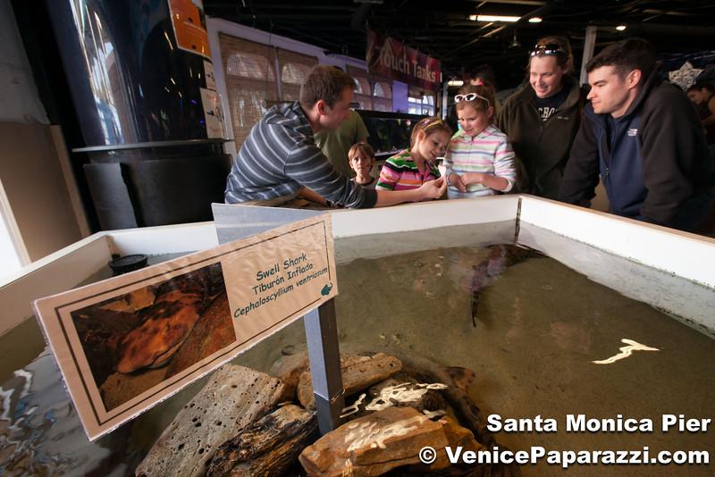 VenicePaparazzi-15.jpg