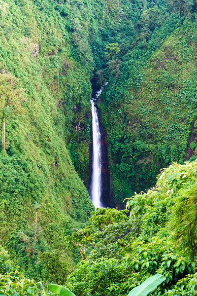 Costa Rica 2015-0639.jpg