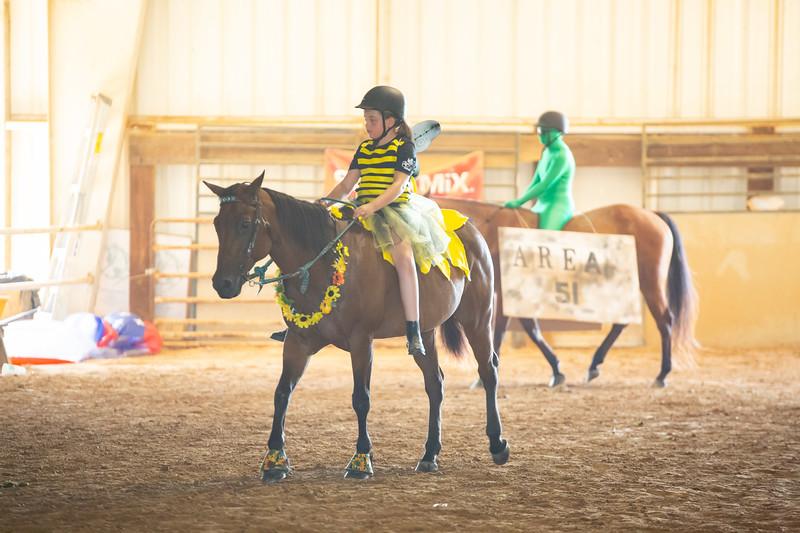 HorseCostume-28.jpg