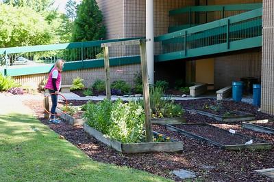 Dedication of Molly's Garden
