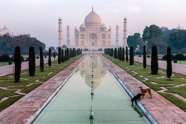 India | Rajasthan, Punjab, Taj Mahal