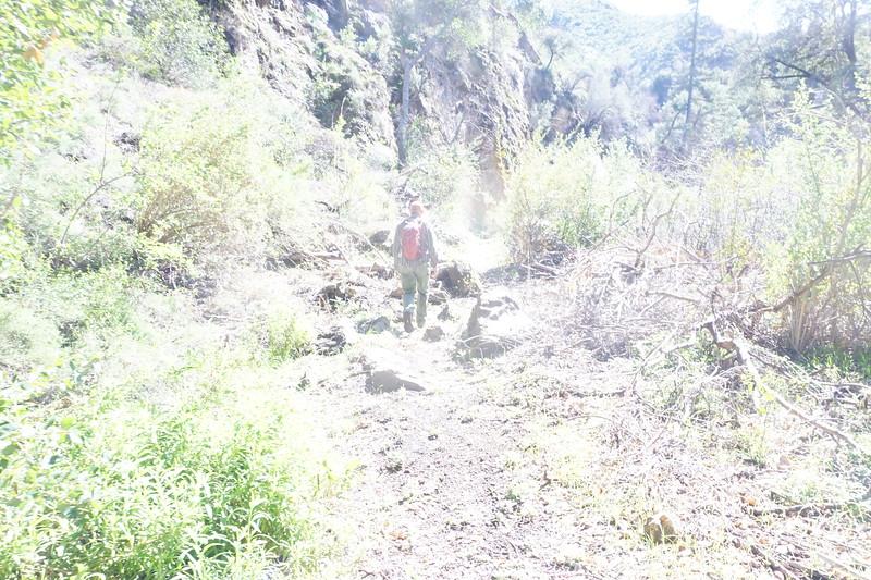 20160218093-Gabrielino Trail Scouting.JPG
