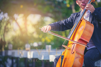 Musician man is practicing the cello playing with the melodiousness. Selected focus.