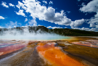Yellowstone 2014 and 2020