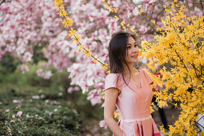 20200221_YenPhuong_Cherryblossom