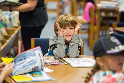 2017 Sanborn Elementary School