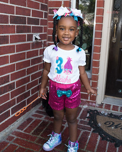 Aleigha Fuller's 3rd Birthday Party