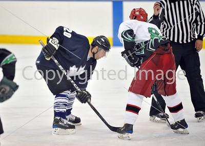 Men's Black Championship - Fresh Sticks VS Leafs