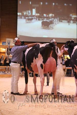 Expo Bulle 2016 Jnr Holstein