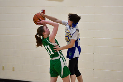 02/27 - Glenview 8th Girls Basketball vs Geneseo