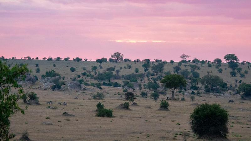 Tanzania-Serengeti-National-Park-Safari-03.jpg