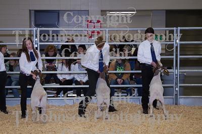 2014 KISD Livestock Show Goats Class 4