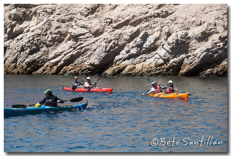 SEA KAYAK 1DX 050315-1254.jpg