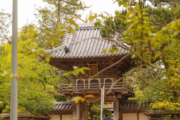 Japanese Tea Garden | San Francisco, CA