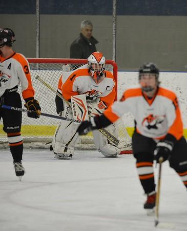 Chagrin Hockey 2015-16
