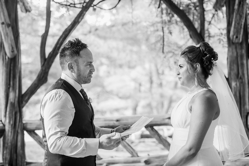 Vicsely & Mike - Central Park Wedding-40.jpg