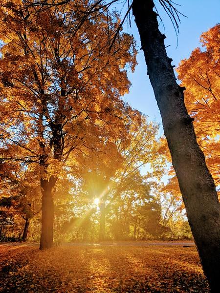 Prince Edward County autumn.jpg