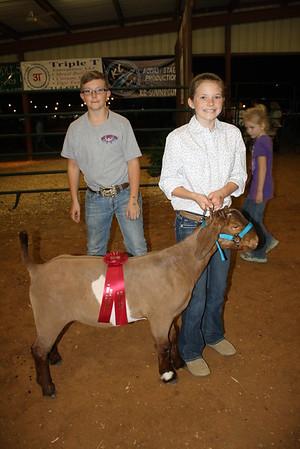 HCF Goat Show