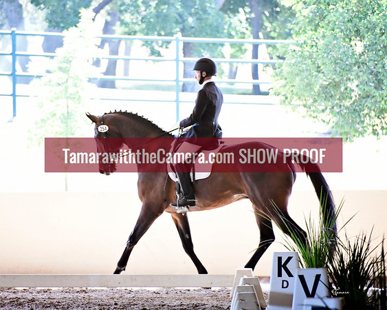 Golden State Dressage Classic June 14-17
