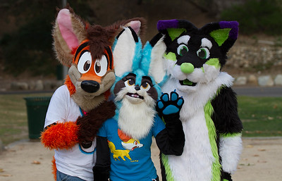 Rose Bowl Furmeet (Jan 2016)