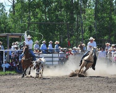 Team Roping (Section 2)
