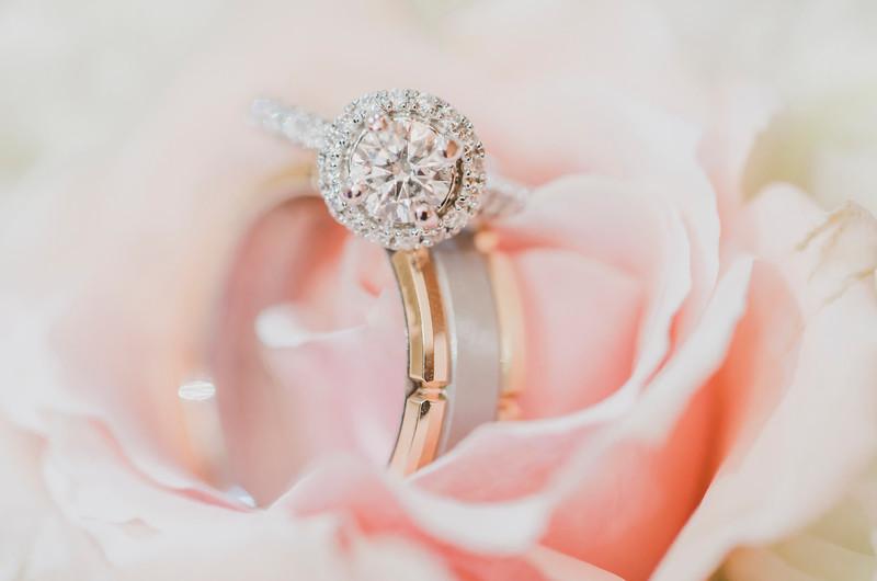 Dana_Andrew_Pavilion_Orchard_Ridge_Farms_Rockton_Illinois_June_Wedding (10 of 625).jpg