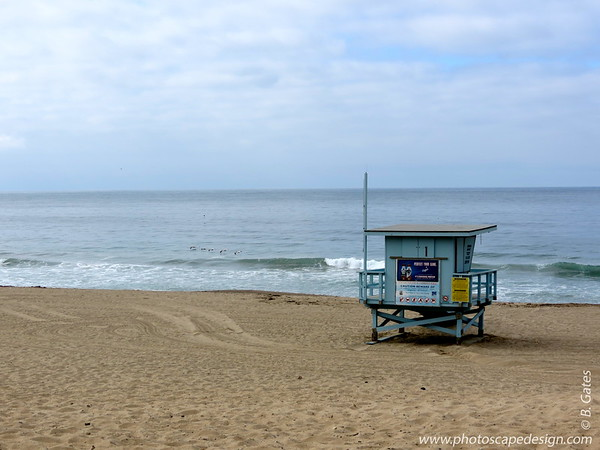 Point Dume - Malibu, CA