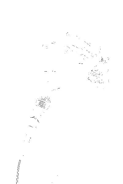 DSC05471.png