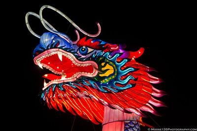 Chinese Lantern Festival - Cary NC