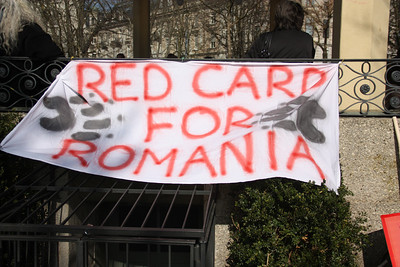 Demonstration Against Romanian Animal Abuse