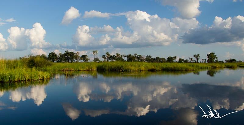 Botswana LandscapeS-8.jpg